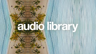 Tropical Love — Nadro & Timmy Commerford [Vlog No Copyright Music]