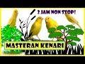 Masteran Kenari Mantap Kicau Suara Kenari 2 Jam Non Stop Ngriwik(.mp3 .mp4) Mp3 - Mp4 Download