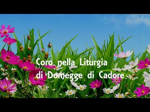 III° MEMORIAL don Claudio Sacco Sonador -  Rassegna di Cori nella Liturgia
