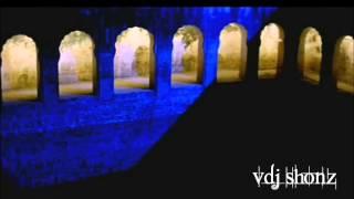 Tere Bina Bhi Kya Jeena DJ SHONZ [Stolen Remix]