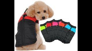 ???? Обзор одежды для собаки с AliExpress