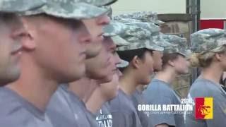 2016 Military Appreciation Day - Gorilla Battalion