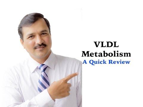Metabolism of VLDL