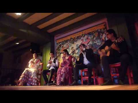 Full flamenco show in Madrid, Spain
