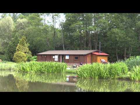 TANYARD COARSE FISHING, Nr UCKFIELD, E. SUSSEX, ANGLERS MAIL TACTICAL BRIEFINGS
