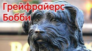 Собаки, ставшие легендой: скай-терьер Грейфрайерс Бобби (Greyfriars Bobby)