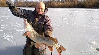 Зимний рыболовный костюм + поплавок + цена/качество = Graff FLOAT GUARD