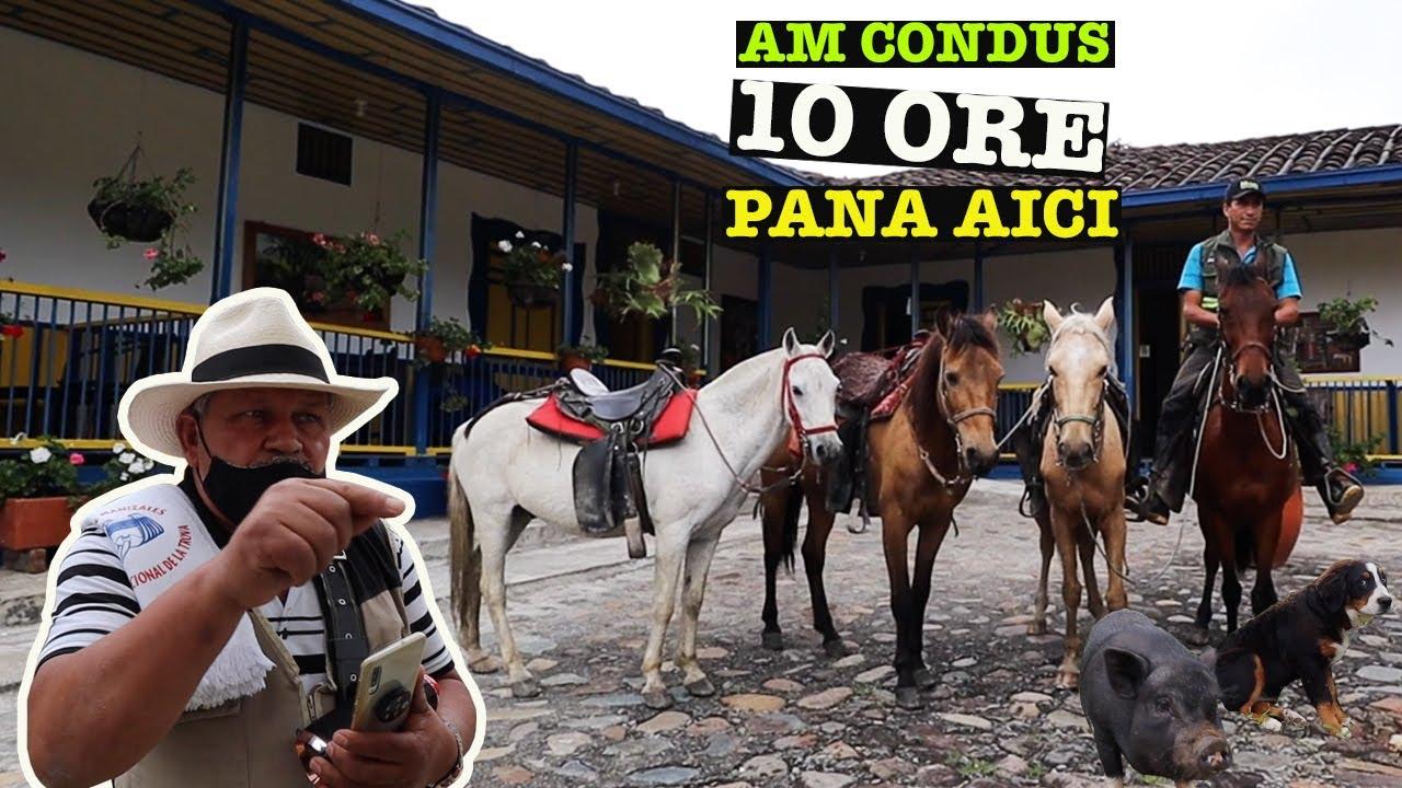 Cazati la o FERMA in muntii Columbiei: SURPRIZELE se tin lant | Salento