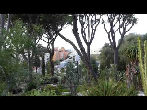 Alameda Gardens in Gibraltar...