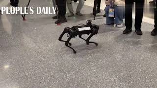 A robotic dog for electricity patrol has caught many eyes at the ongoing Asian Figure Skating Open