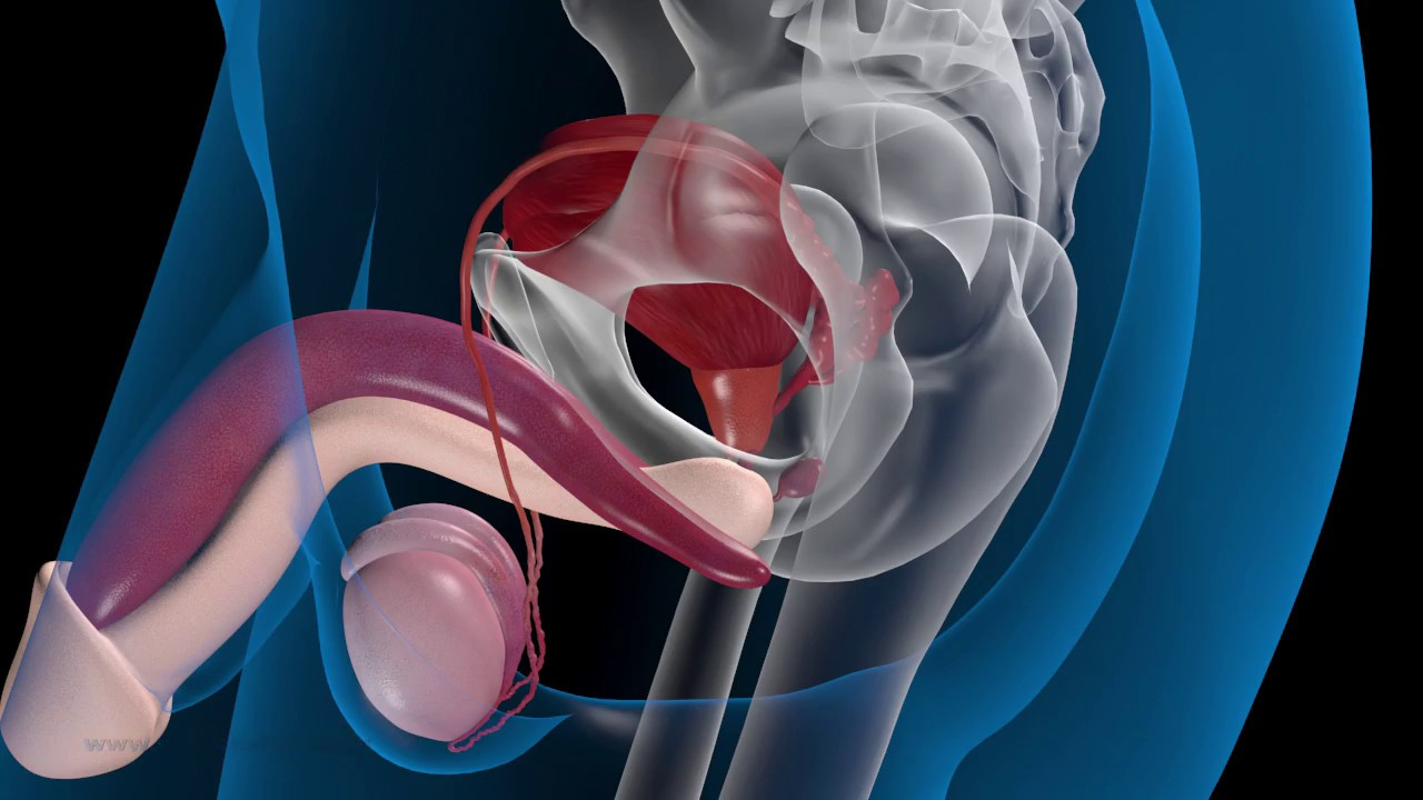 förstorad prostata operation