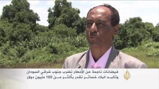 فيديو..فيضان السودان يسبب خسائر بـ100 مليون دولار