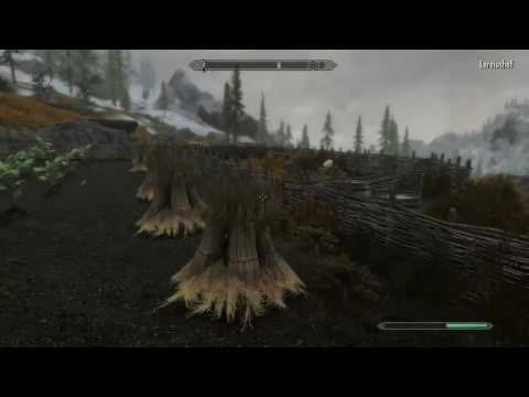 Lets Play ☆ The Legend of Skyrim:Crisis Core (Skyrim mit Mods)#2 ☆