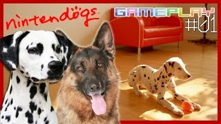 Nintendogs (Dalmatian & Friends): Ep. 01 [ITA]