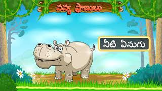 Learn Types of Wild Animals | Animated Video For Kids | Telugu Animation for Kids