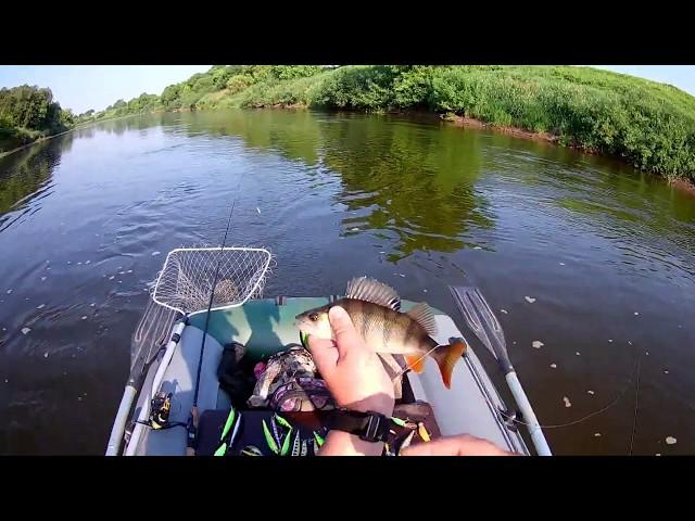 Ловля спиннингом на реке Днепр в июне 2019