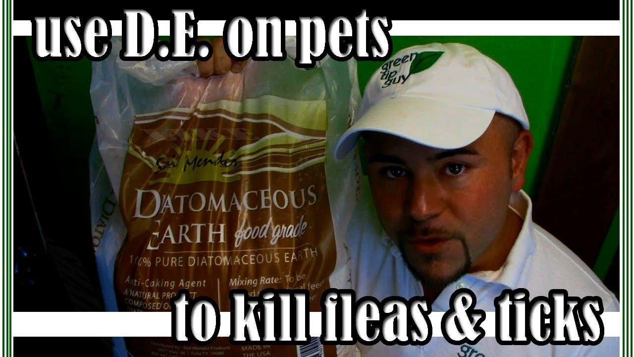 Diatomaceous Earth Food Grade Powder 5 Lb