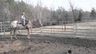 cowgirls don t cry feat reba mcentire fan video