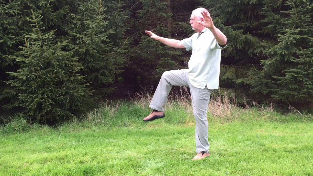 Yang Style Tai Chi 47 Moves – Rear View