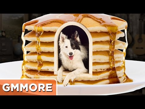 How To Build A Pancake Dog House