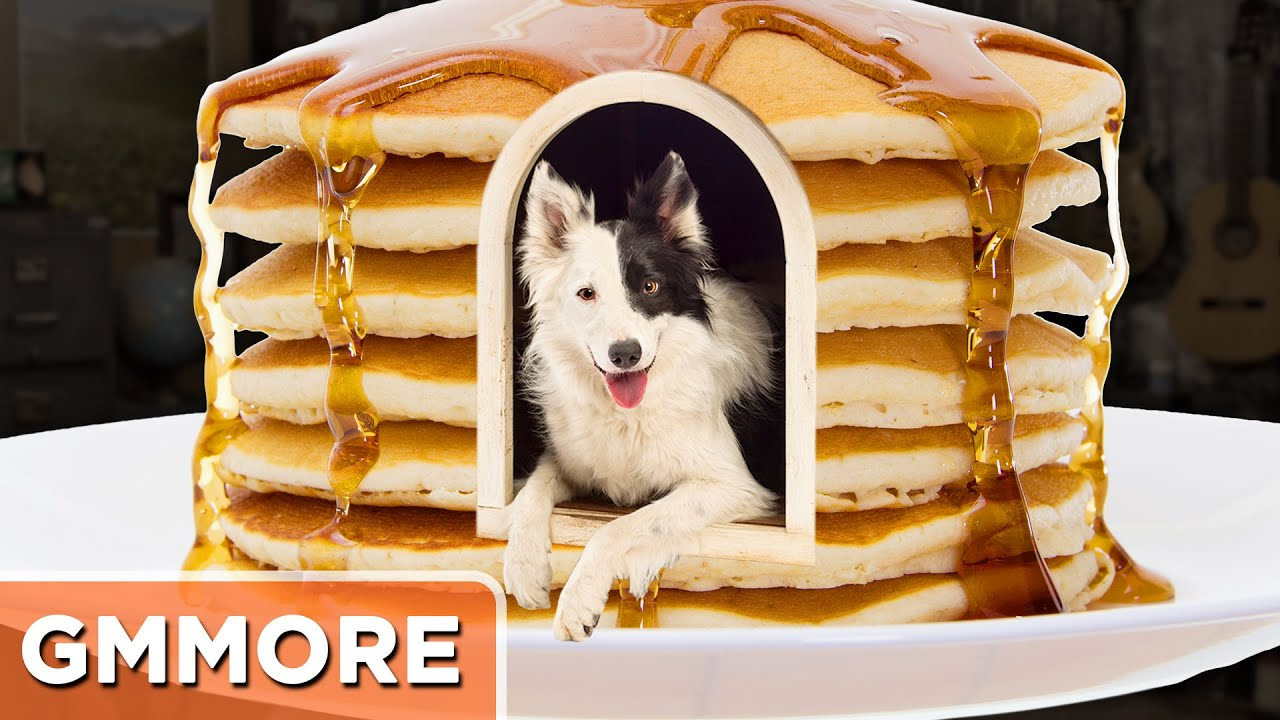 How to build a pancake dog house youtube for How to build a dog house youtube