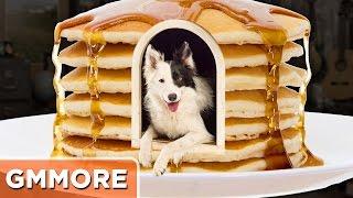 How To Build A Pancake Dog House