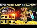 BFA Gold Guide: Anchor Weed (Episode 3 - Herbalism and Alchemy)