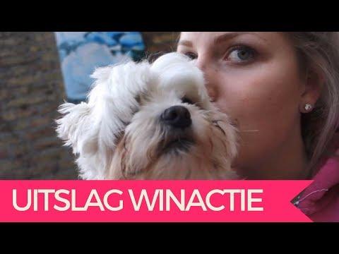 TRAINEN BIJ DE BONDSCOACH DEEL 2    JILL HUIJBREGTS VLOG#86 from YouTube · Duration:  17 minutes 23 seconds