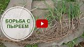 Приствольный круг от Рязанцева В.В. - YouTube