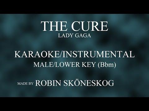 THE CURE (ACOUSTIC) - LADY GAGA   LOWER/MALE KEY (KARAOKE/INSTRUMENTAL) w/ LYRICS