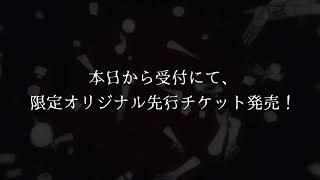 椎名ぴかりん 「降誕祭2017」先行オリジナルチケット発売告知!