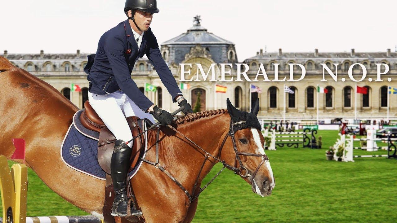 Resultado de imagen de EMERALD horse