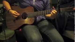 ed sheeran signature guitar review the martin lx1e