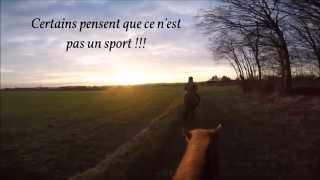 L'équitation ...