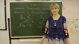"""Урок химии по теме """"Соли"""" для 8 классов (учитель Швецова Елена Евгеньевна)"""