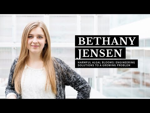 Harmful Algal Blooms: Engineering Solutions to a Growing Problem | Bethany Jensen | Ignite 2018