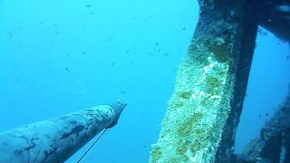 Pesca SUB Relitto Torre Vado