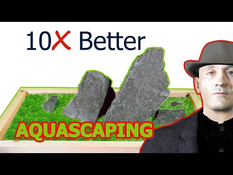How To Get 10X Better In Aquascaping