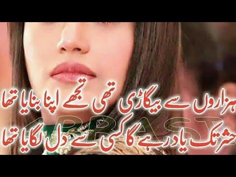New Best Urdu Poetry // Best Sad Heart Broken Poetry // Hindi Best Shayari //Urdu Farsi Gojri Poetry