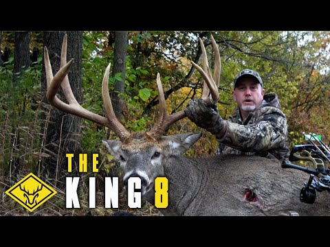 The KING 8 | GIANT Buck is CALLED in to 20 yards!