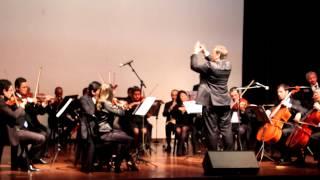 Valsa Vozes da Primavera - Strauss