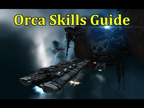 How To Efficiently Train Your Orca Mining Skills! - EVE Online