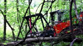 Kubota SVL Compact Track Loader Trail Blazing