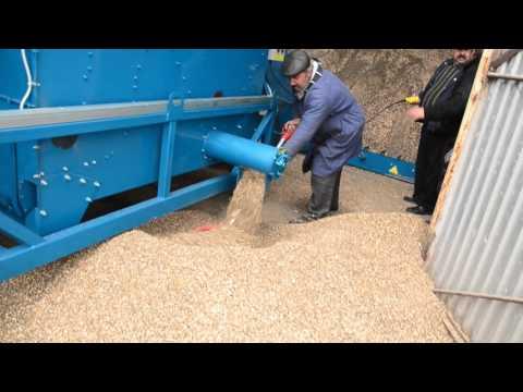 Очистка и погрузка очень грязного подсолнечника ОВС 70М завода сельхозмашин