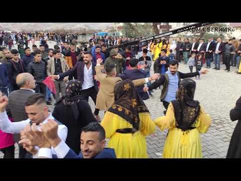 Şiyar Berwari - Kasrik Düğünü [ 2021 © HD ] شيار برواري
