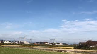 【甲種輸送】JR東日本E261系サフィール踊り子号 岐阜〜木曽川通過