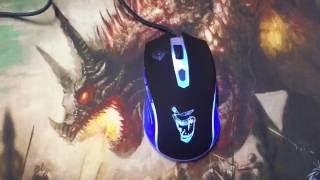 Qumo Dragon War Gamer Video