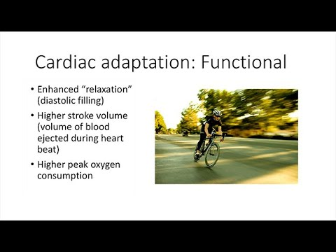 The Heart of a Cyclist: Insights from Sports Cardiology