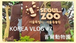 KOREA VLOG #7 韓國日常 首爾大公園 動物園一日遊!!!