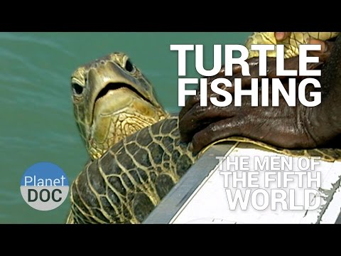 Turtle Fishing. The Men of Fifth World | Tribes - Planet Doc Full Documentaries